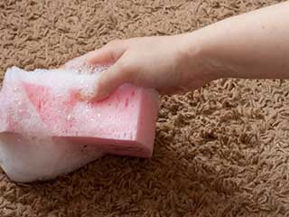 How to Prevent Carpet Stains | Carpet Cleaning Moorpark CA